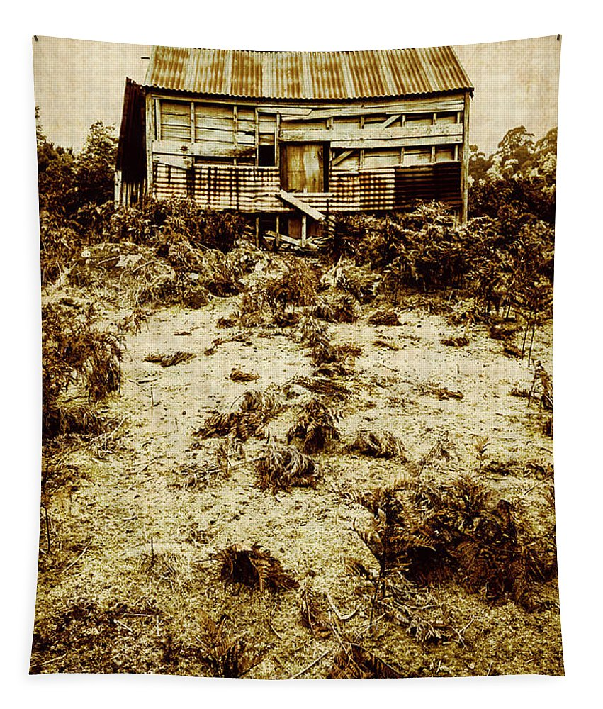 Cabin Tapestry featuring the photograph Rusty Rural Ramshackle by Jorgo Photography - Wall Art Gallery