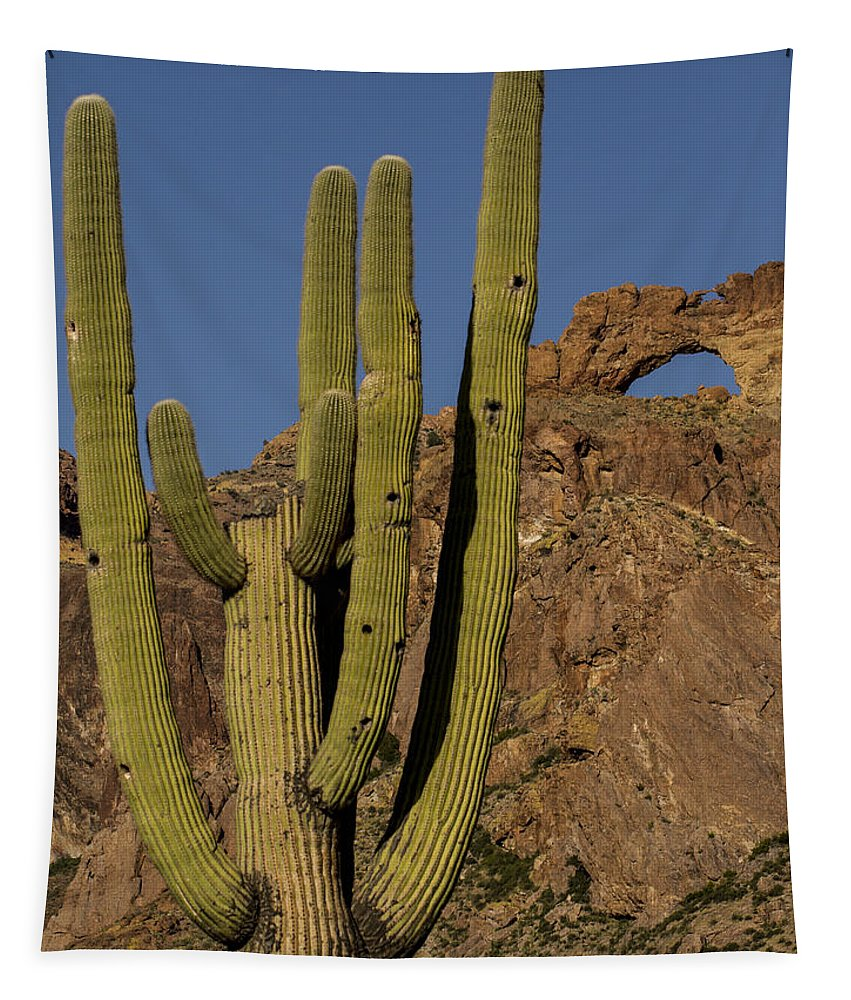 Jean Noren Tapestry featuring the photograph Saguaro Cactus Near Arch by Jean Noren
