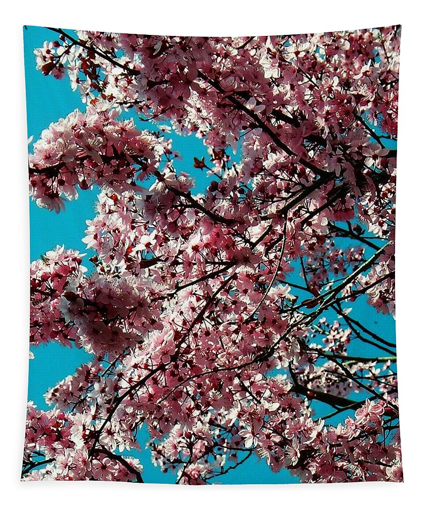 Fruehling Tapestry featuring the photograph Sakura by Juergen Weiss
