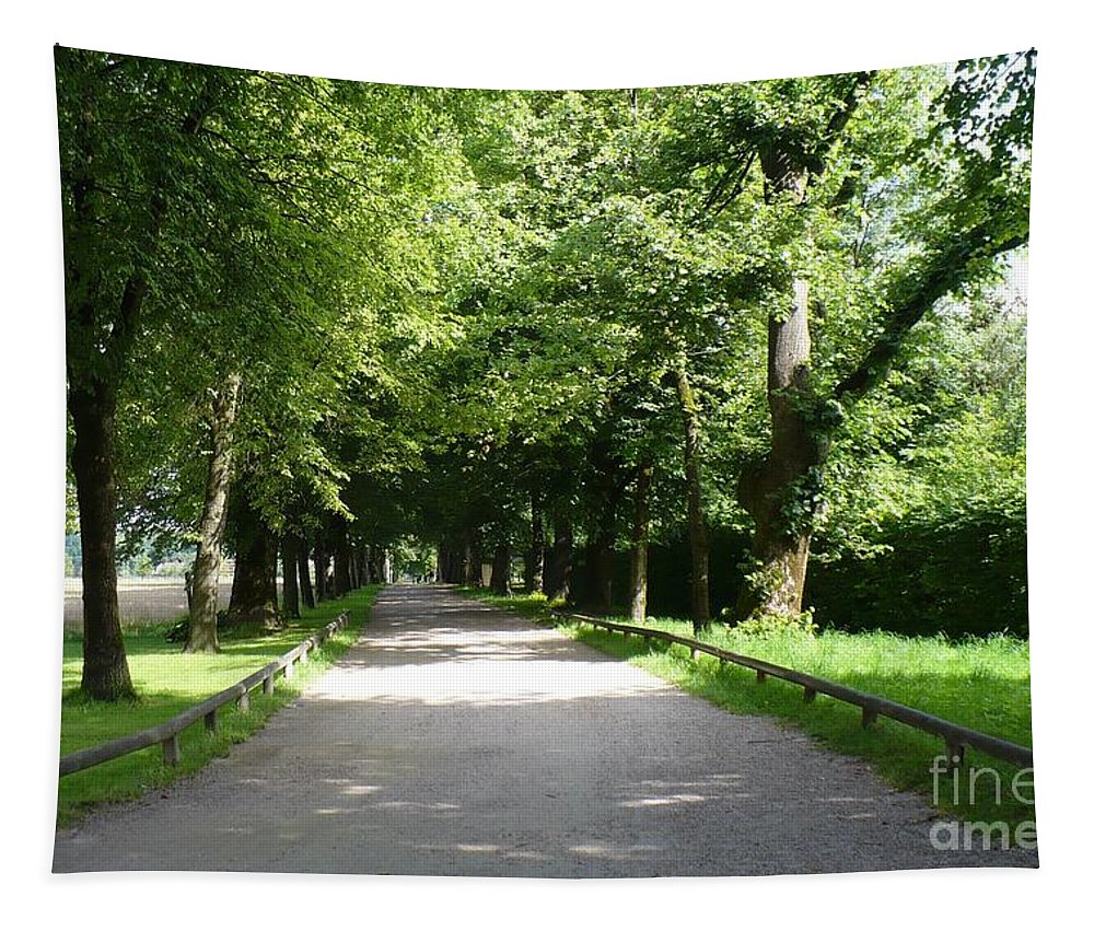 Austria Tapestry featuring the photograph Salzburg Lane by Carol Groenen