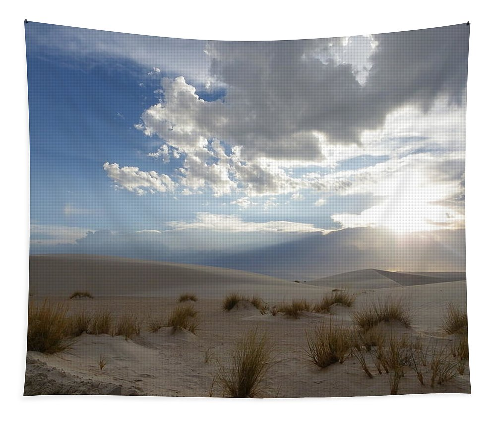 Landscape Tapestry featuring the photograph Sand Sun by Charleen Treasures