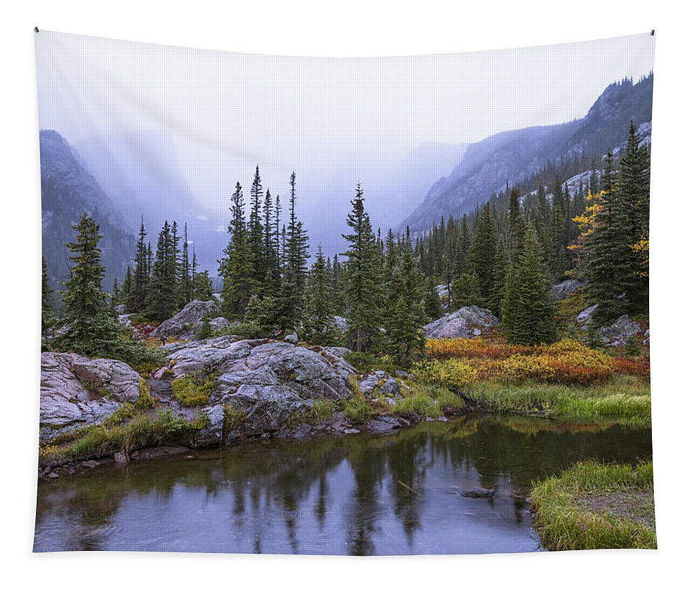 Saturated Forest Tapestry featuring the photograph Saturated Forest by Chad Dutson