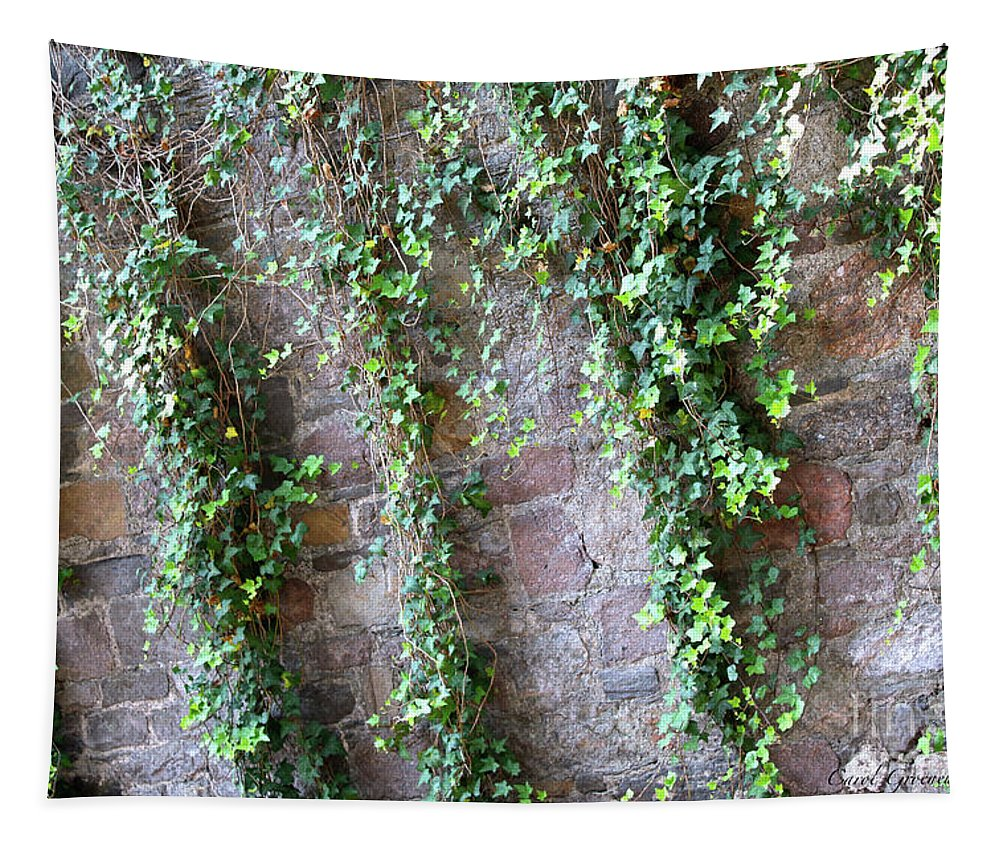 Savannah Tapestry featuring the photograph Savannah Ivy Wall by Carol Groenen