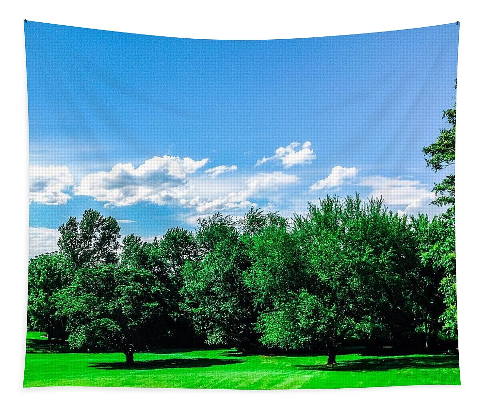 Sky Tapestry featuring the photograph Saying Good Bye To Spring by Debra Lynch