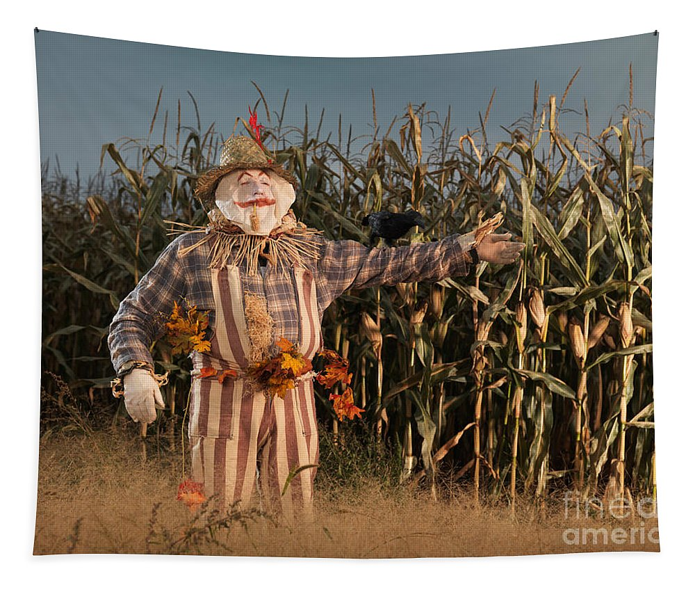 Scarecrow Tapestry featuring the photograph Scarecrow In A Corn Field by Oleksiy Maksymenko