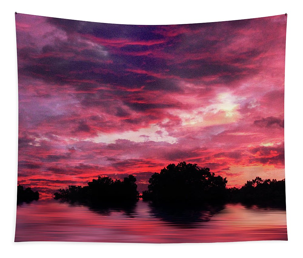 Sunset Tapestry featuring the photograph Scarlet Skies by Jessica Jenney