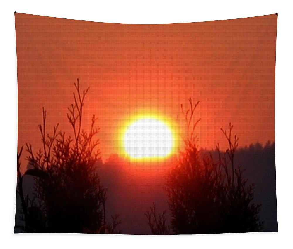 Sun Tapestry featuring the photograph Scorching Sun by Will Borden