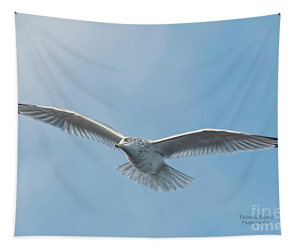 Seagull Tapestry featuring the photograph Seagull Blue Sky by Deborah Benoit