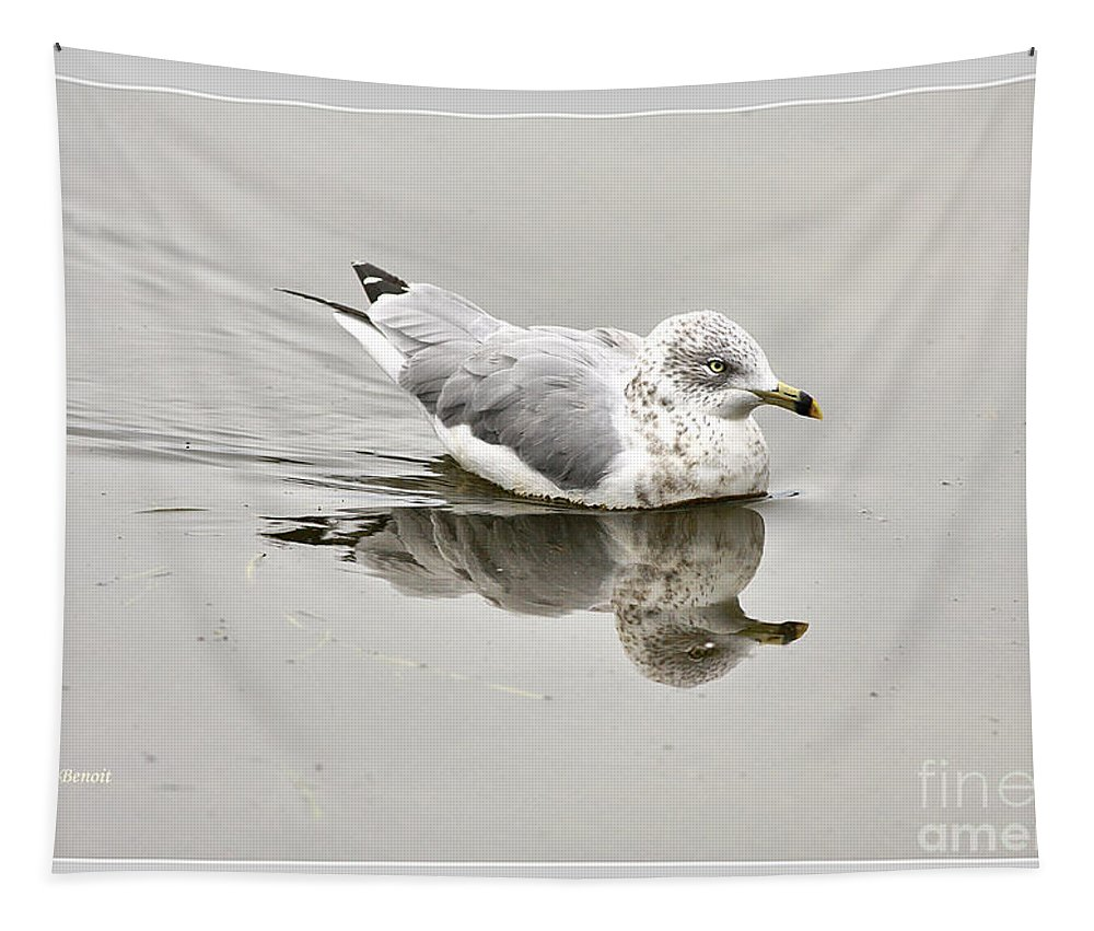 Bird Tapestry featuring the photograph Seagull Reflections by Deborah Benoit