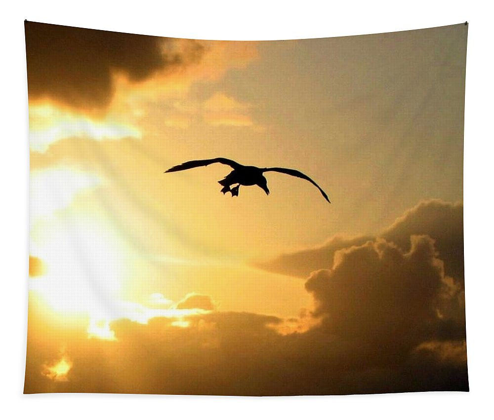 Seagull Tapestry featuring the photograph Seagull Silhouette by Will Borden