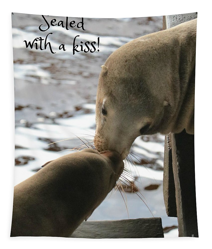 Sea Lions Tapestry featuring the photograph Sealed With A Kiss by Carol Groenen