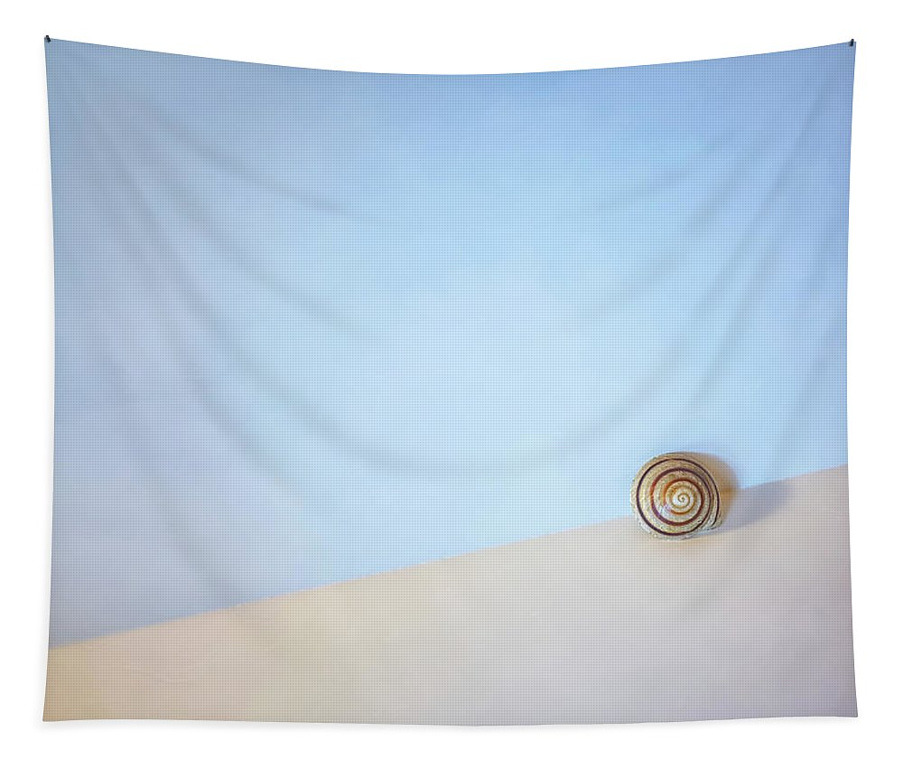 Seashell Tapestry featuring the photograph Seashell By The Seashore by Scott Norris