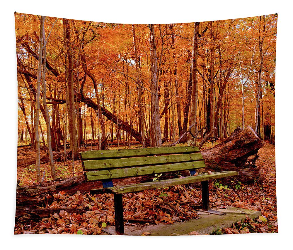Maple Tapestry featuring the photograph Seat To Autumn by Bonfire Photography