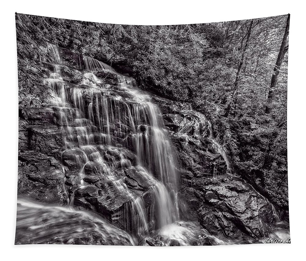 Christopher Holmes Photography Tapestry featuring the photograph Secluded Falls - Bw by Christopher Holmes