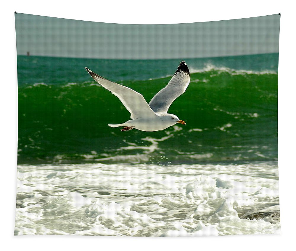 Sea Gull Tapestry featuring the photograph See Gull by Greg Fortier
