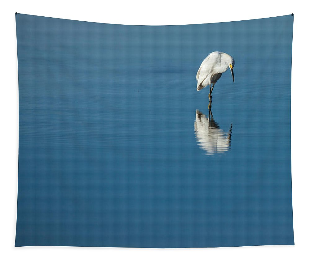 Egret Tapestry featuring the photograph Seeing Self Image by Karol Livote