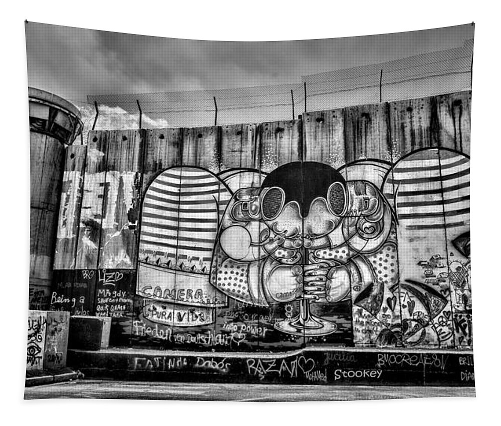 Graffiti Tapestry featuring the photograph Separation by Stephen Stookey