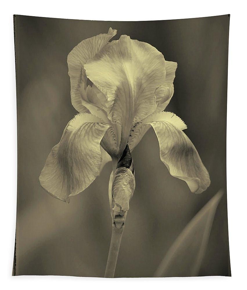 Flower Tapestry featuring the photograph Sepia Iris by Karen Adams