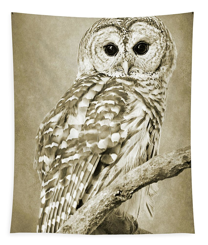 Owl Tapestry featuring the photograph Sepia Owl by Christina Rollo