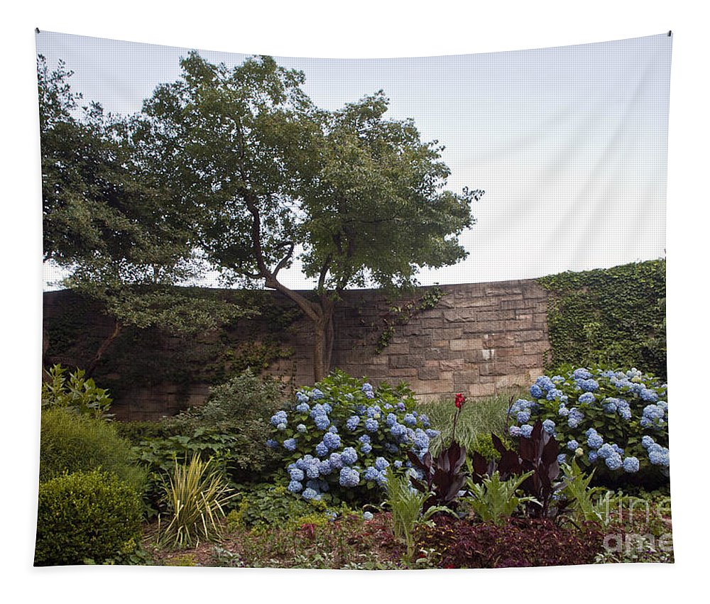 Botany Tapestry featuring the photograph Serenity by Madeline Ellis