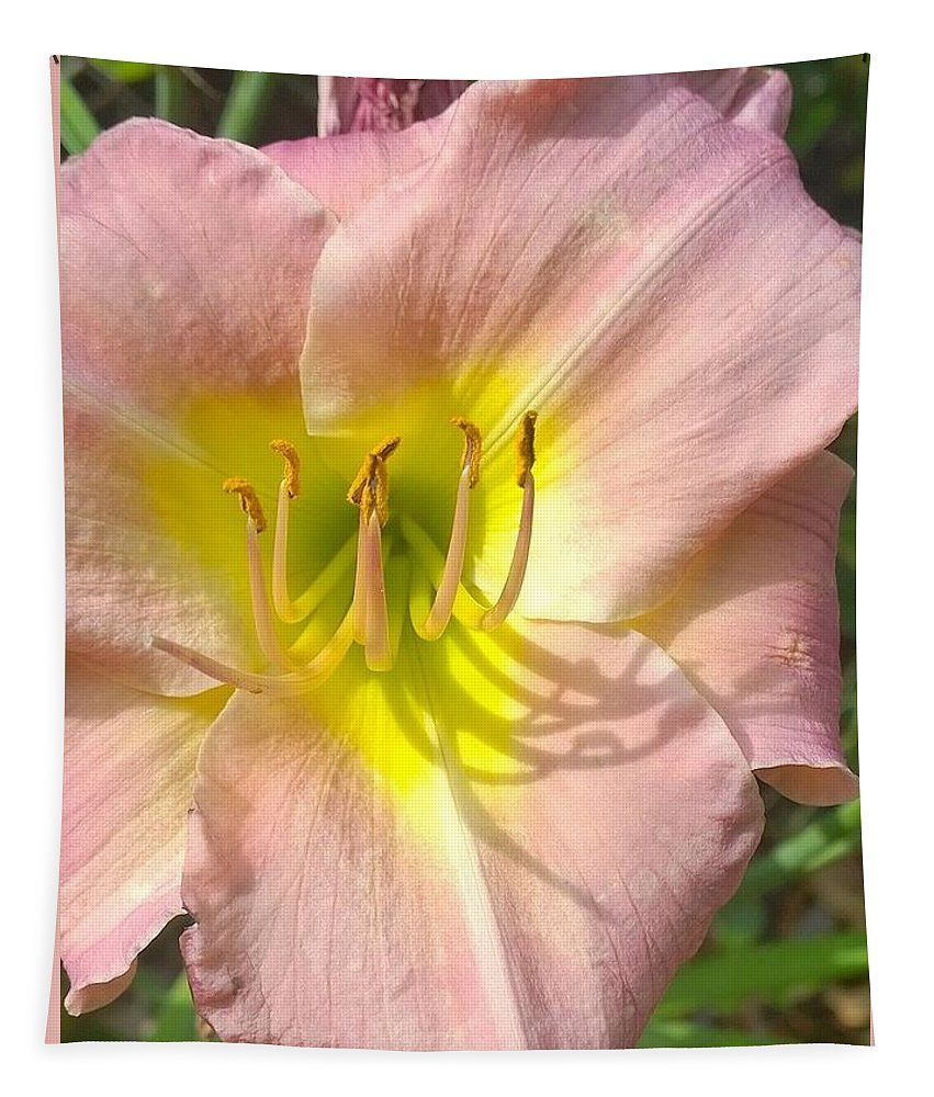 Day Lily Tapestry featuring the photograph Shadow On The Petals by Gayle Miller