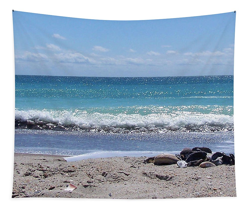 Beach Tapestry featuring the photograph Shells On The Beach by Sandi OReilly