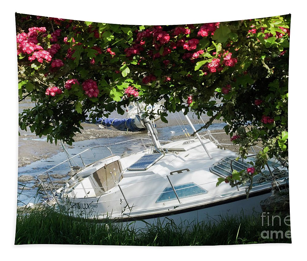 Mylor Creek Tapestry featuring the photograph Shindilla Framed With Flowers by Terri Waters