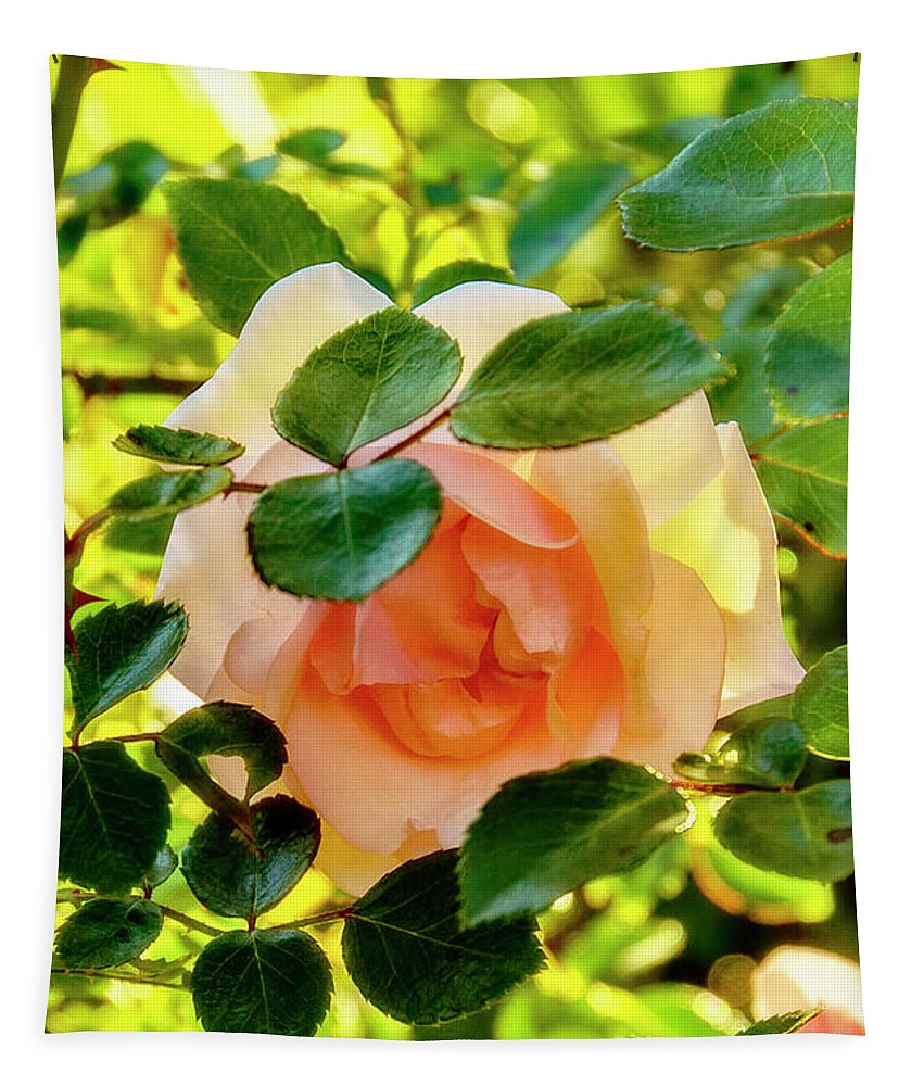 Rose Tapestry featuring the photograph Shy Rose by Kay Brewer