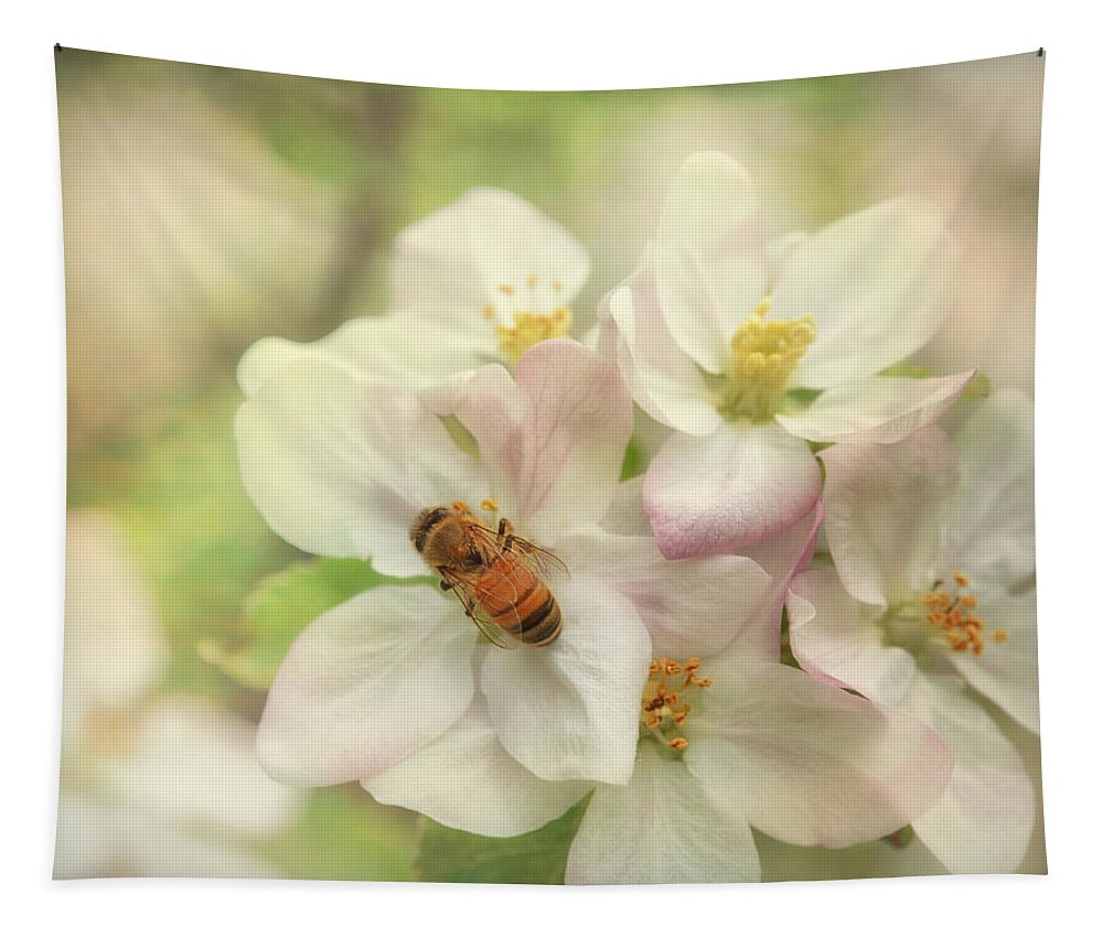 Appleblossoms Tapestry featuring the photograph Signs Of Spring by Susan Capuano