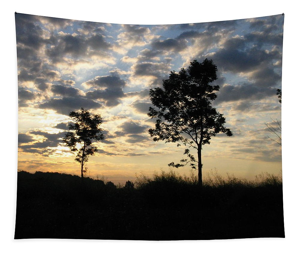 Landscape Tapestry featuring the photograph Silhouette by Rhonda Barrett