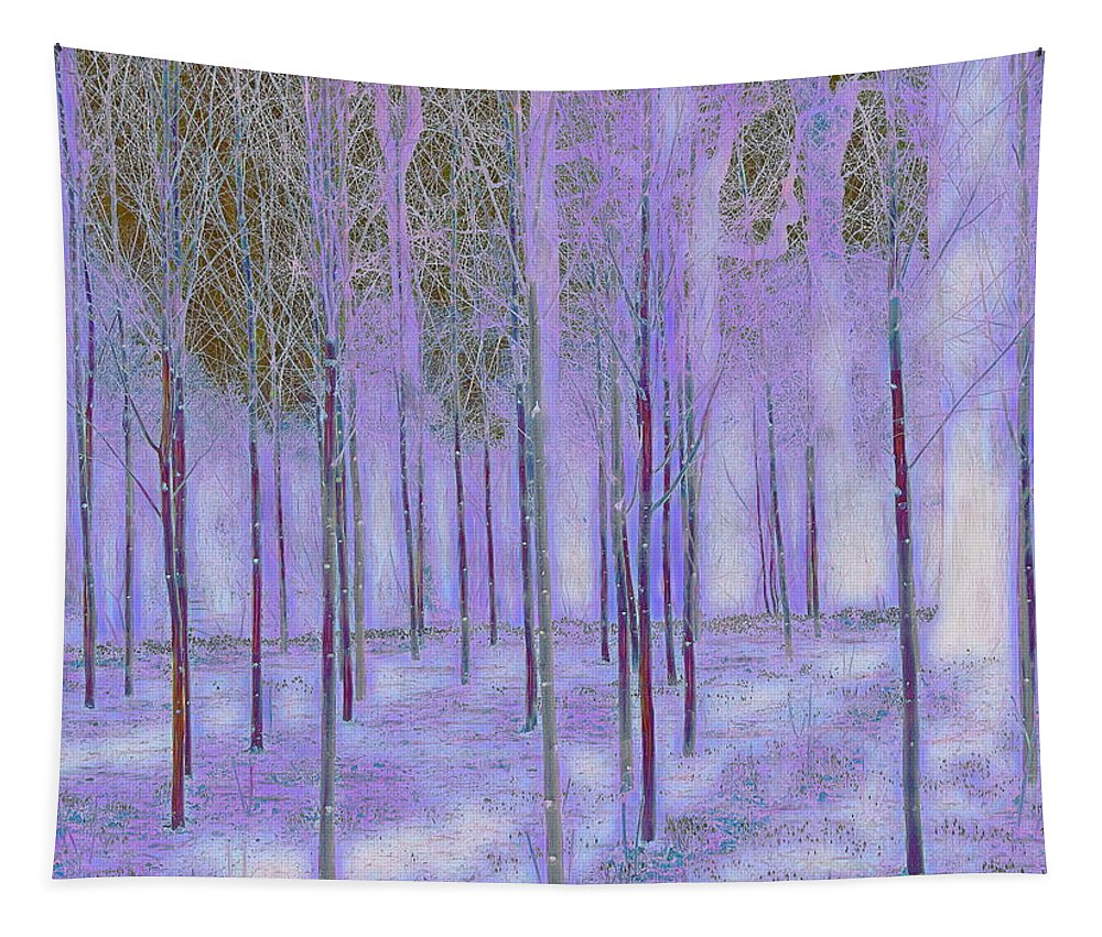 Silver Birch Tapestry featuring the digital art Silver Birch Magical Abstract by Mo Barton