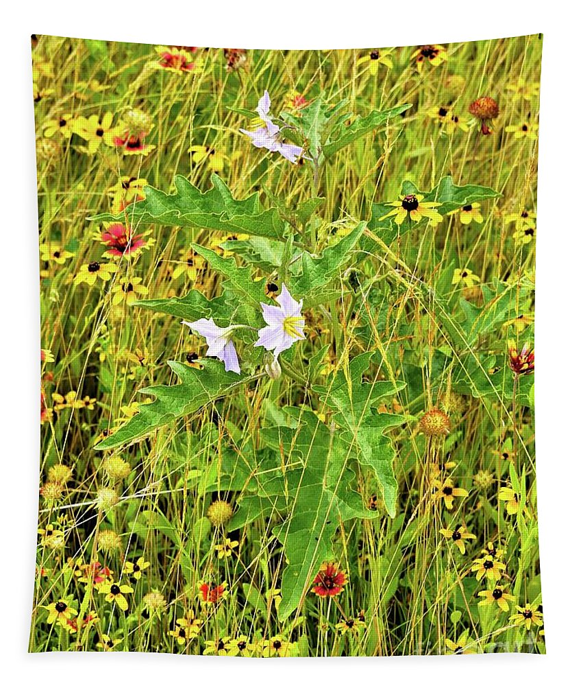 Silverleaf Nightshade Tapestry featuring the photograph Silverleaf Nightshade by Gary Richards