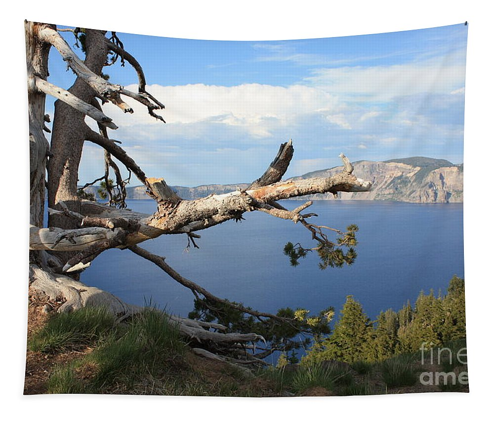 Crater Lake Tapestry featuring the photograph Silvery Tree Over Crater Lake by Carol Groenen