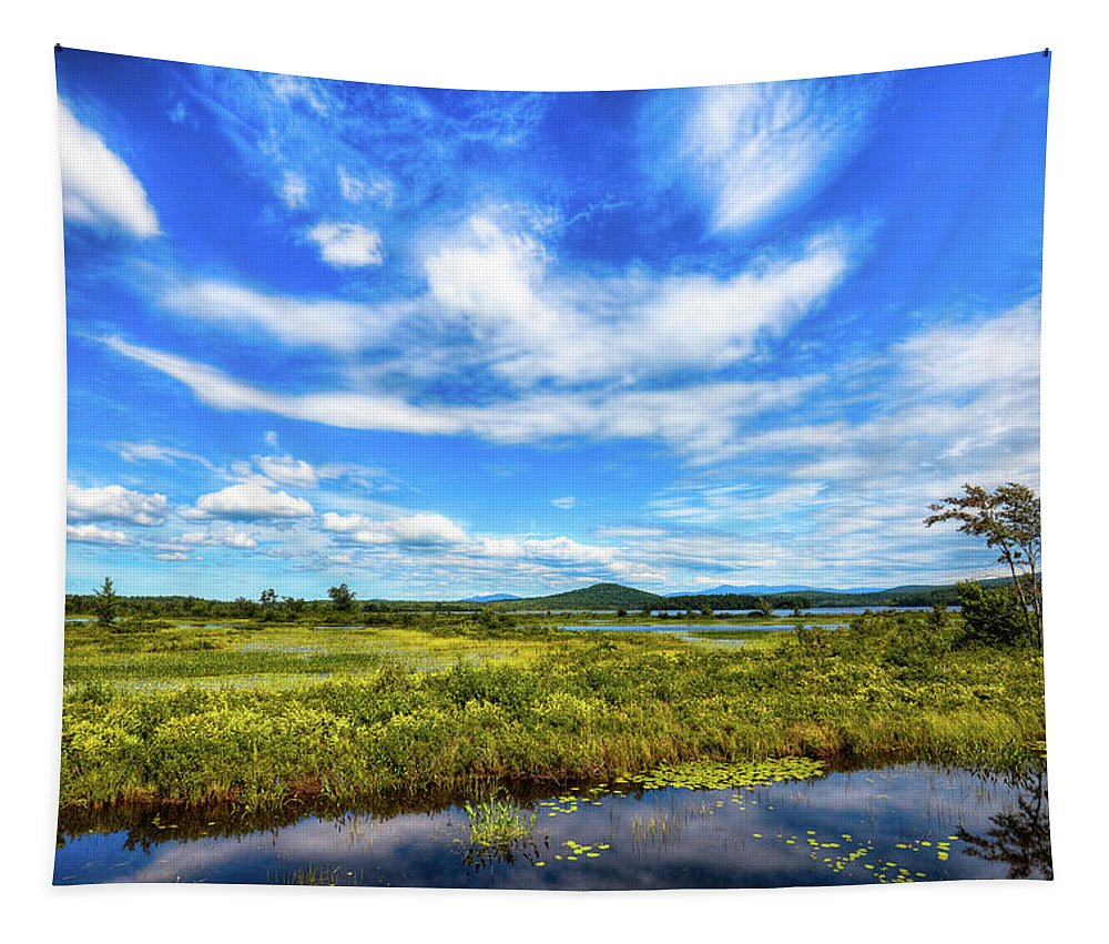 Simon Pond Tapestry featuring the photograph Simon Pond by David Patterson