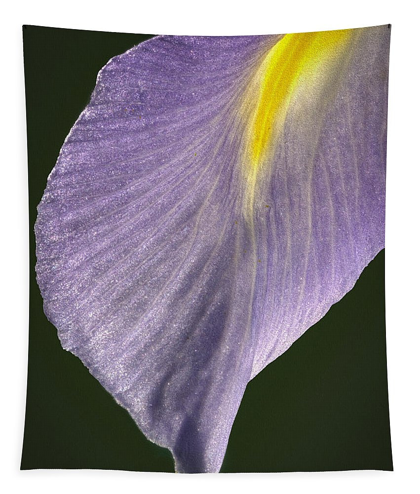 Jean Noren Tapestry featuring the photograph Simplicity by Jean Noren