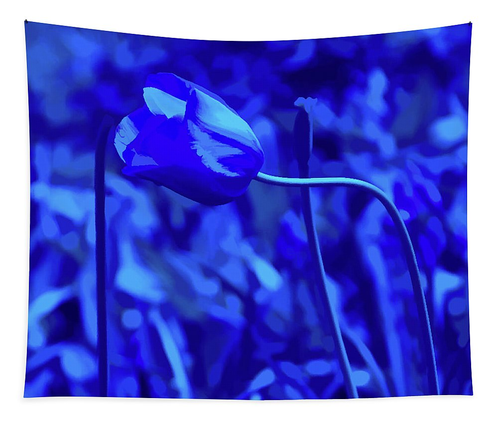 Blue Tulip Tapestry featuring the photograph Simply Blue Pink Tulip by Aimee L Maher ALM GALLERY