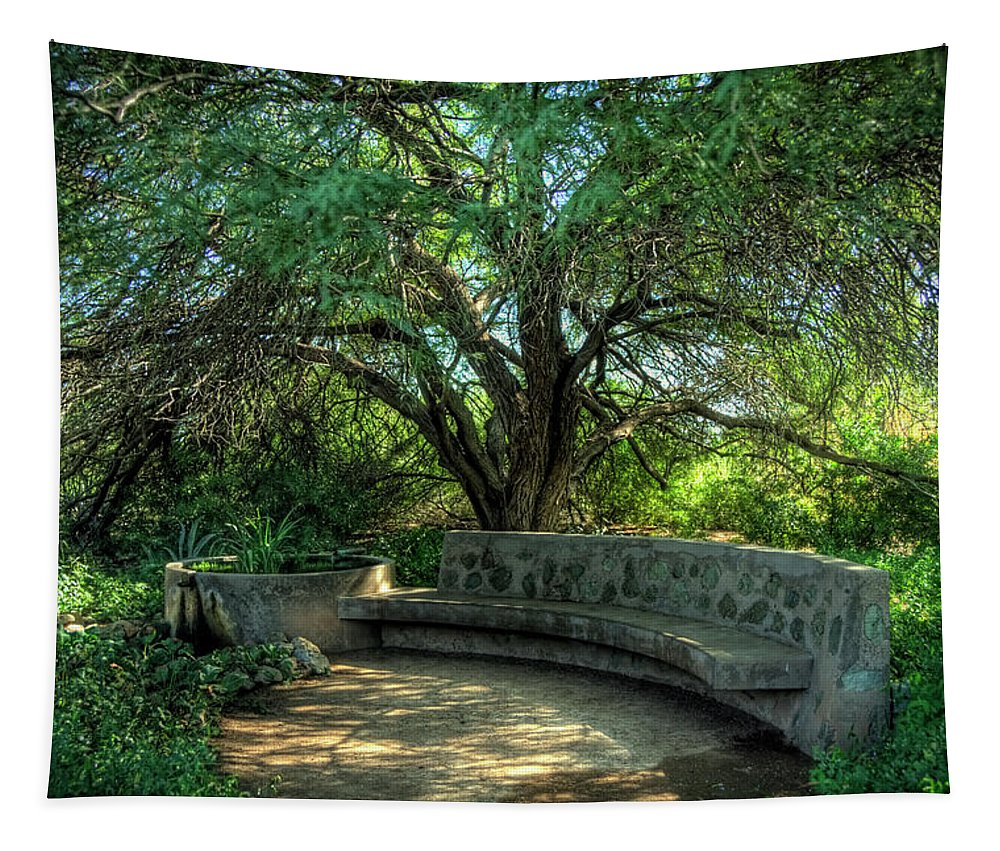 Arizona Tapestry featuring the photograph Sit Back And Listen by Saija Lehtonen