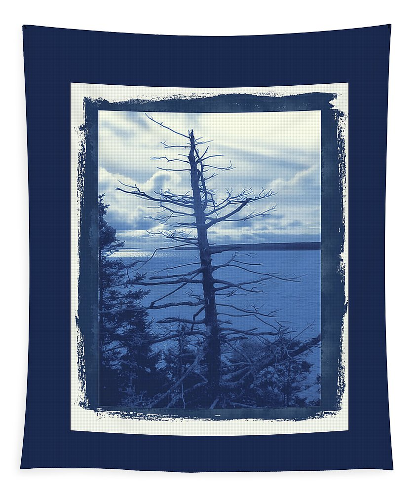 Cyanotype Tapestry featuring the photograph Skeleton #3 by Robert McCulloch