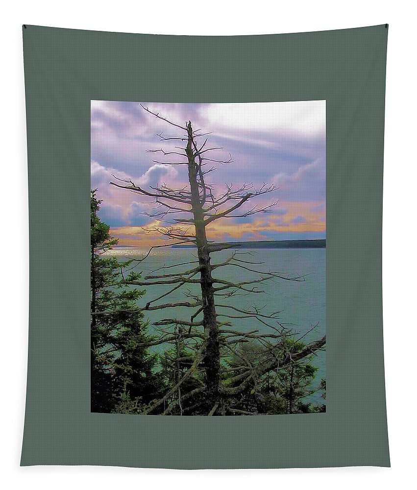 Bass Harbor Tapestry featuring the photograph Skeleton by Robert McCulloch