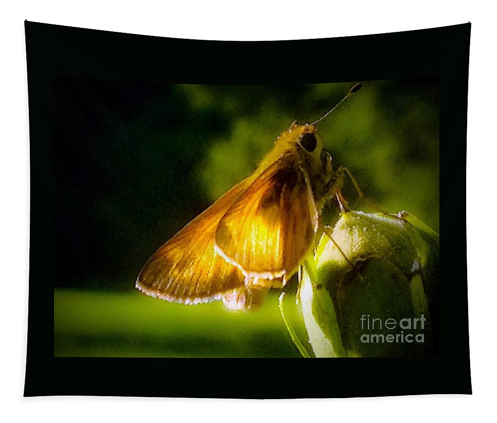 Skipper Tapestry featuring the photograph Skipper Butterfly Basking In Sun by Debra Lynch