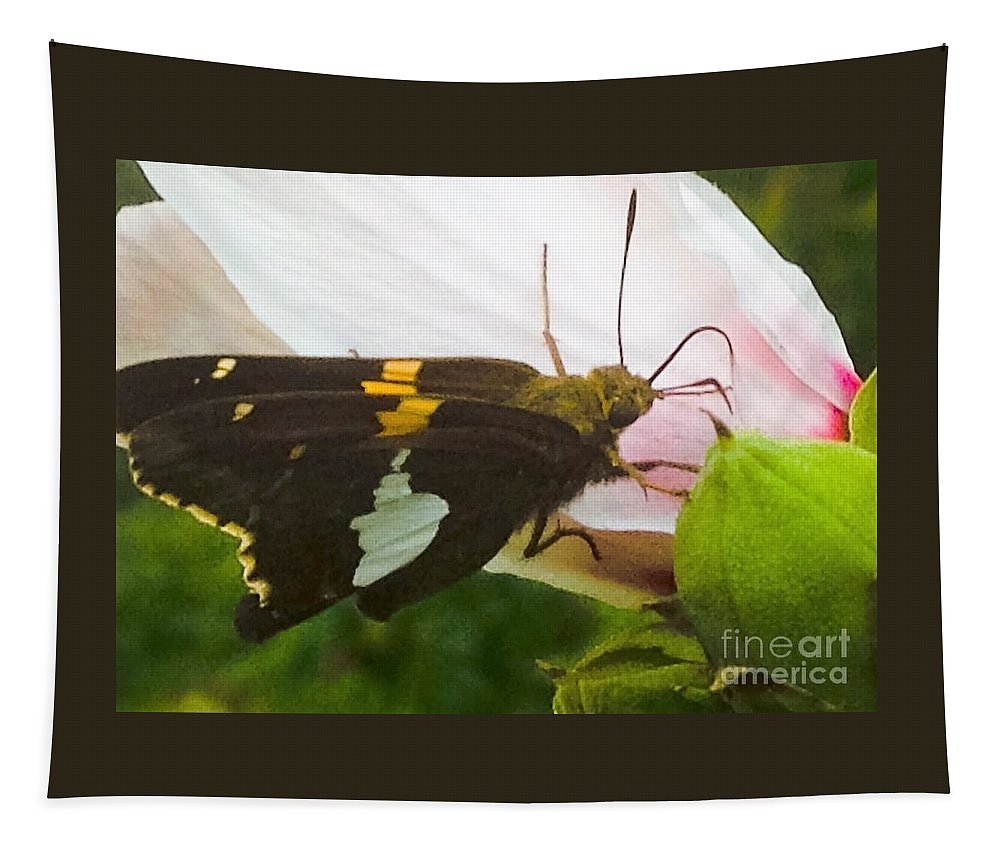 Skipper Tapestry featuring the photograph Skipper by Debra Lynch