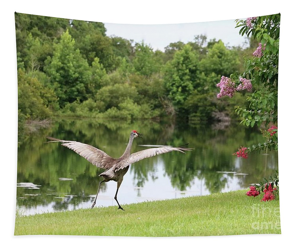 Florida Sandhill Crane Tapestry featuring the photograph Skipping Sandhill Crane By Pond by Carol Groenen