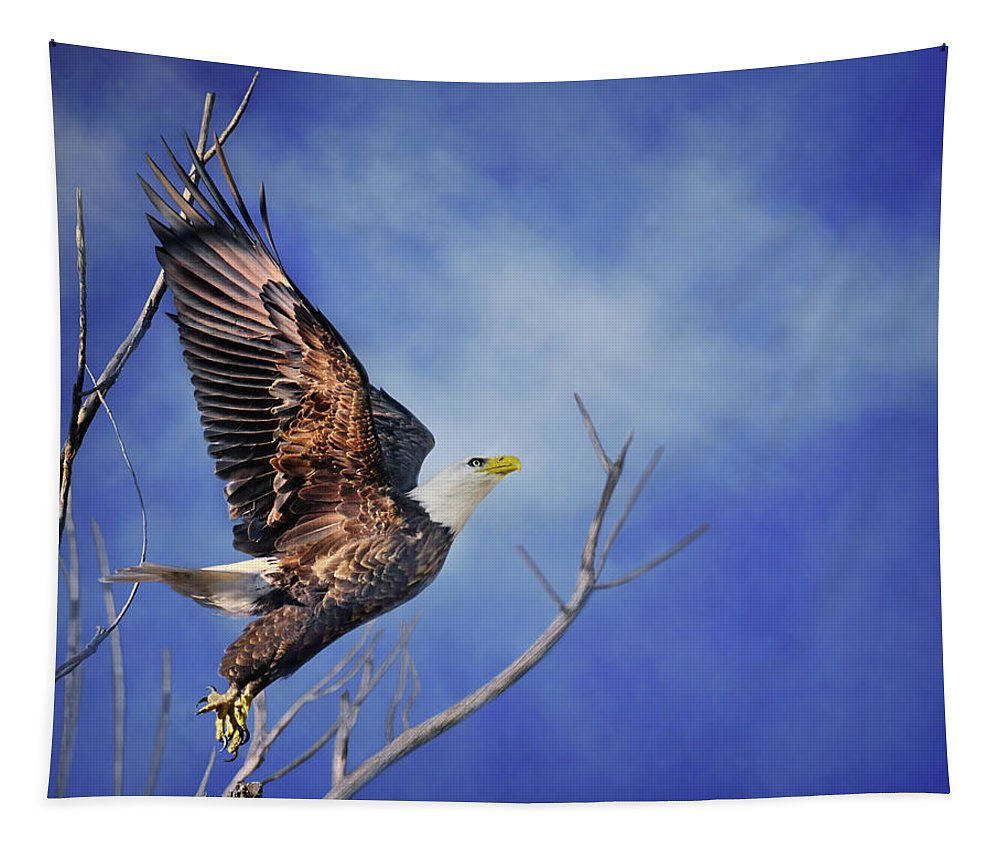 Bald Eagle Tapestry featuring the photograph Skyward - Bald Eagle by Nikolyn McDonald
