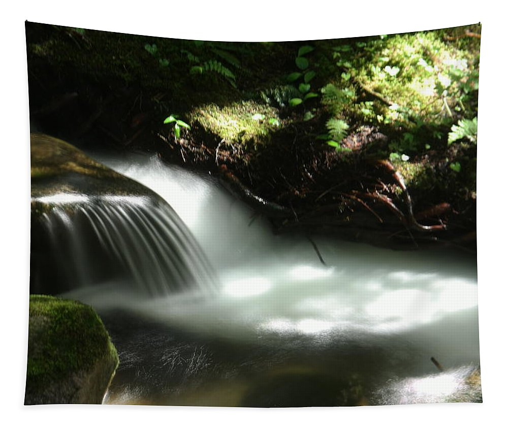 Water Tapestry featuring the photograph Small Illuminated Pool by Jeff Swan