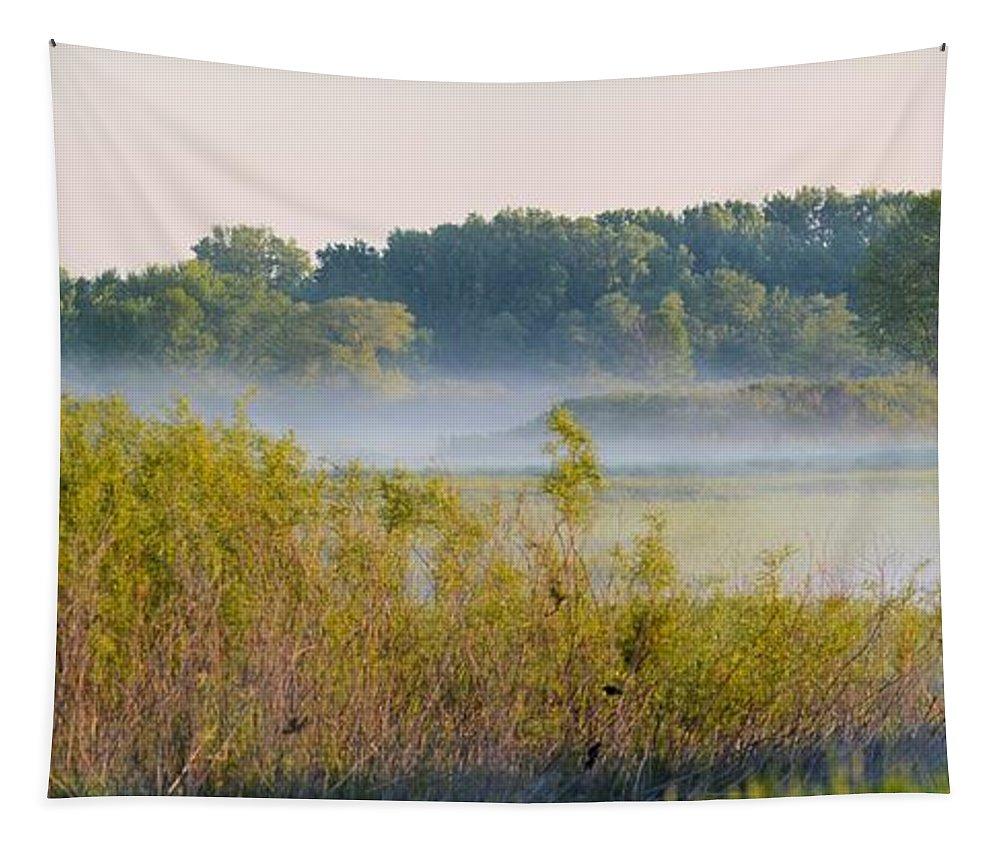 Hazy Tapestry featuring the photograph Smokey Marshland by Bonfire Photography