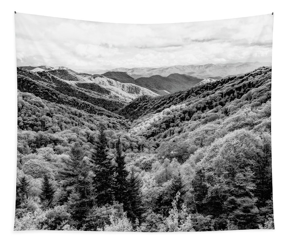 Great Smoky Mountain National Park Tapestry featuring the photograph Smoky Mountains In Black And White by Kay Brewer
