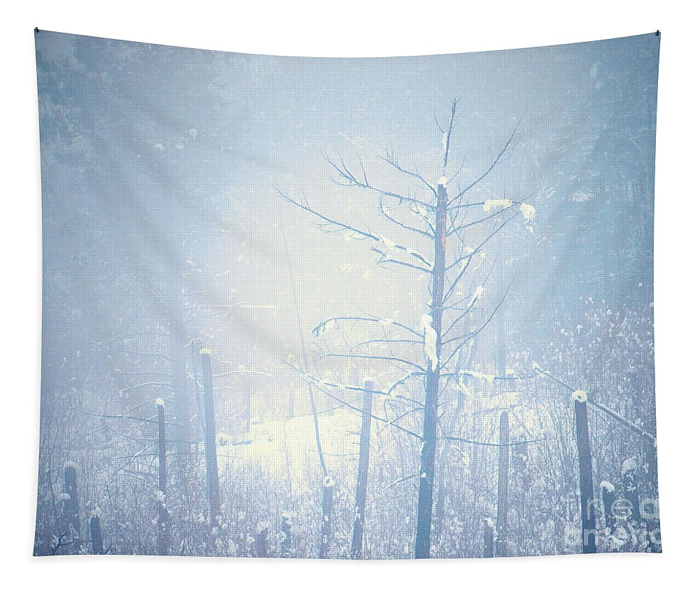 Snow Tapestry featuring the photograph Snow And Remnants Of The Fire 2 by Tara Turner