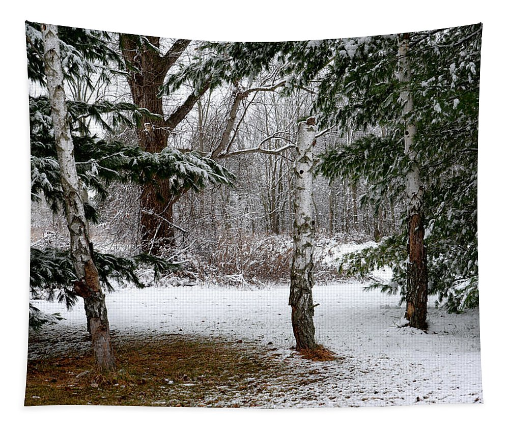 Snow Tapestry featuring the photograph Snow In Pines by Barbara Treaster
