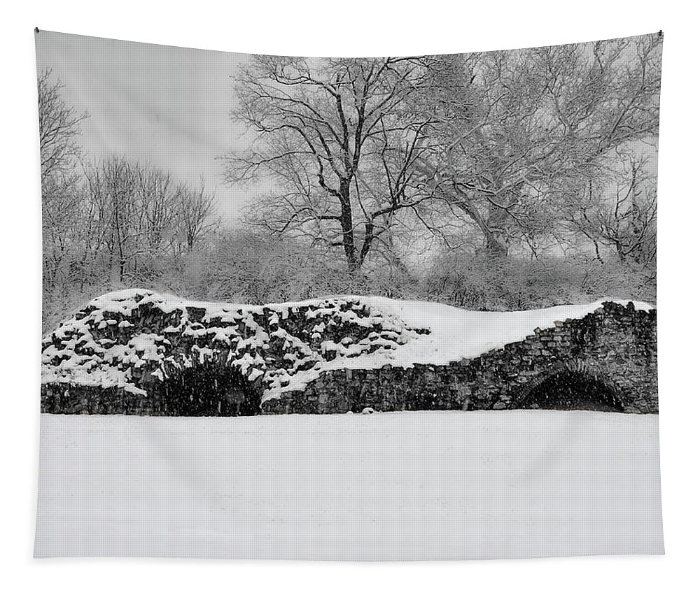 Snow Tapestry featuring the photograph Snow In Plymouth Meeting Pa In Black And White by Bill Cannon