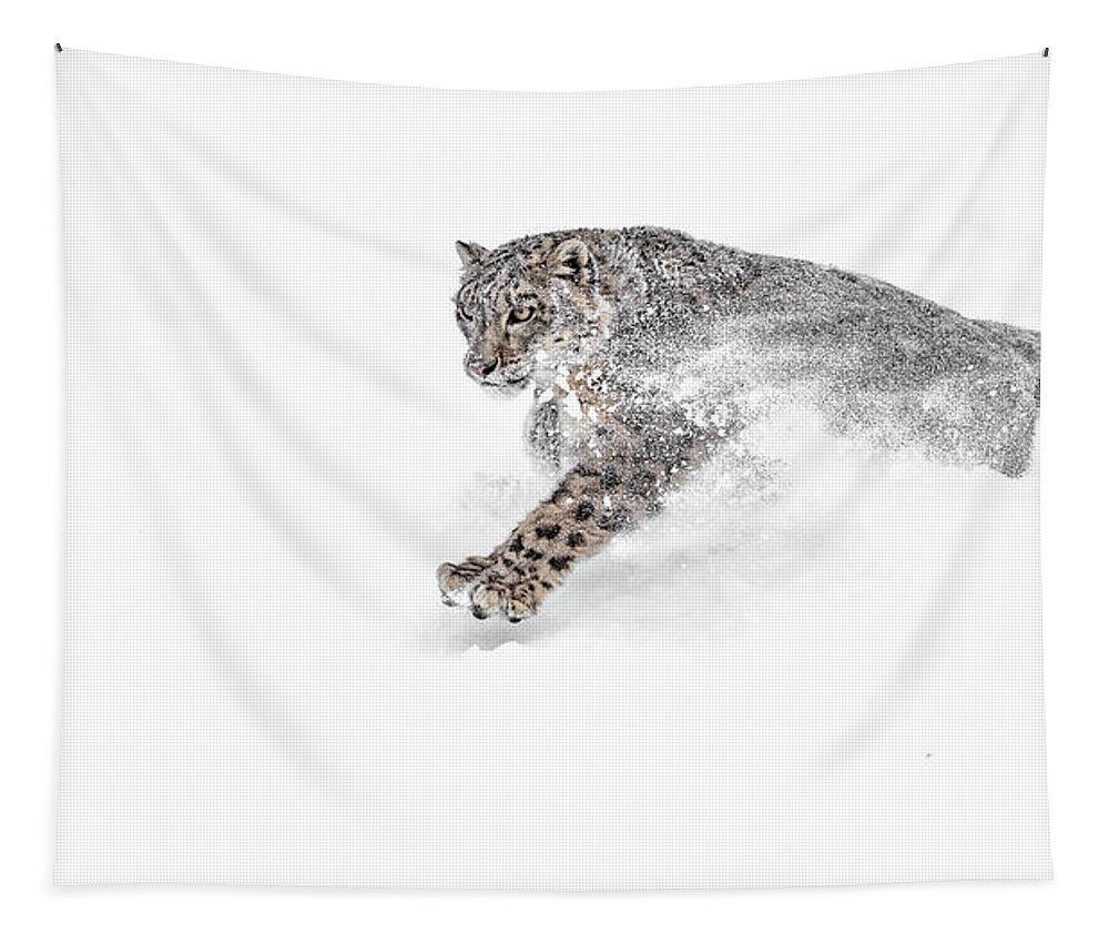 Snow Leopard Snowplow Tapestry featuring the photograph Snow Leopard Snowplow by Wes and Dotty Weber